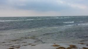 Badekar ses også tydeligt ved lavvande, hvor bølgerne bryder på 1. revle.