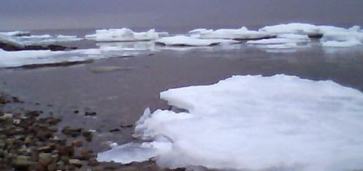 havørred om vinteren
