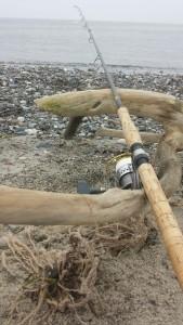 Spinnestang kystfiskeri