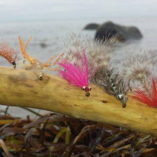 fluer til kystfiskeri efter havørreder