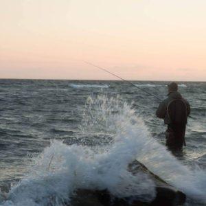 Kystfiskeri efter havørreder. Det bedste vejr til havørreder med fcoo.dk