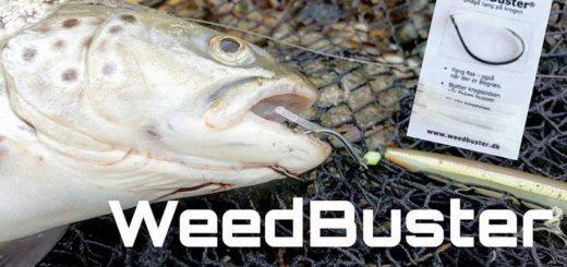 Weedbuster og slip for ålegræs