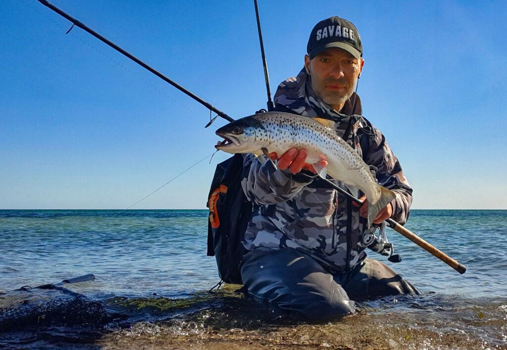Kystfiskeri efter havørred